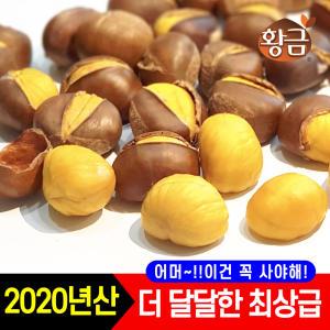 황금약단밤 2020년산 올해 햇 약밤 500g (가장 맛납니다)